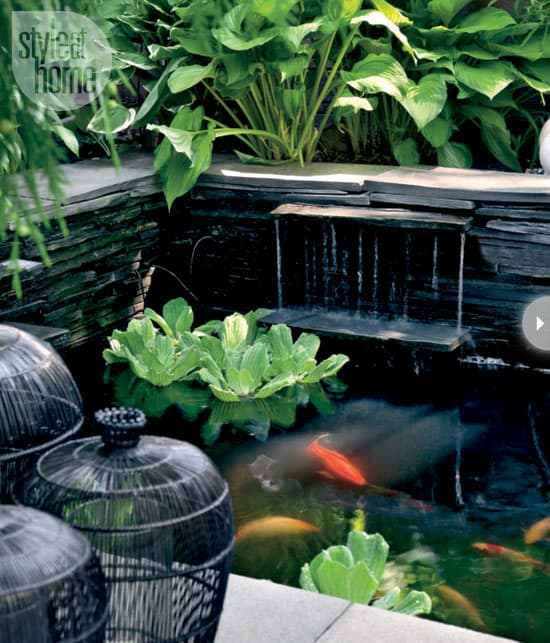 backyard-makeover-pond