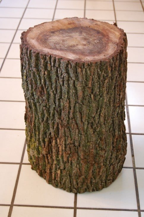 Stumped How To Make A Tree Stump Table The Art Of Doing