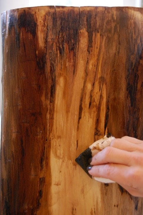 Wiping a thin layer of stain over the side of a tree stump.