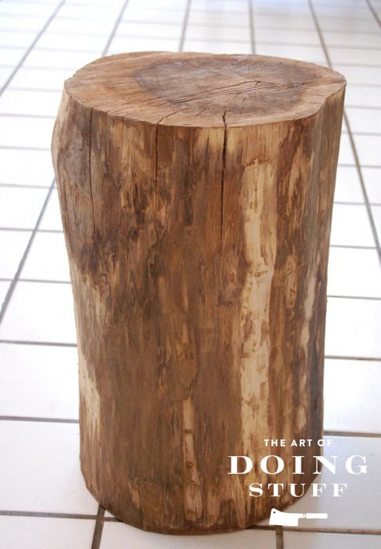 plain-stump