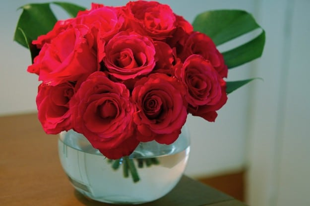 A dozen red roses with the stems cut short, in a round clear bubble vase.