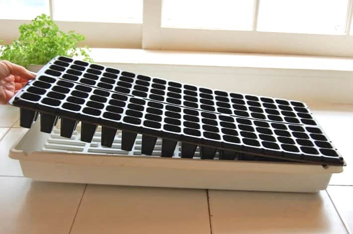 Black seed starting tray set in white drip tray on ceramic counter.