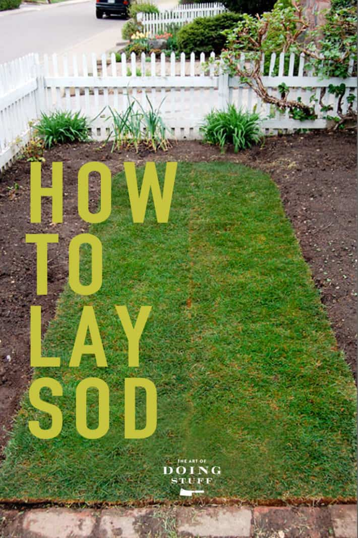 How to Lay Sod for a Beautiful Lawn