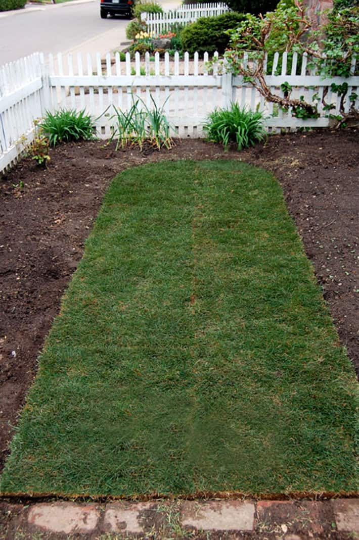 How To Lay Sod A Step By Guide