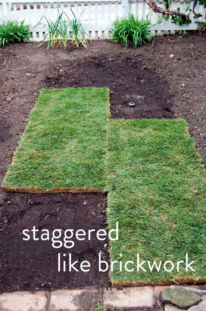 How To Lay Sod A Step By Guide The Perfect Lawn Art