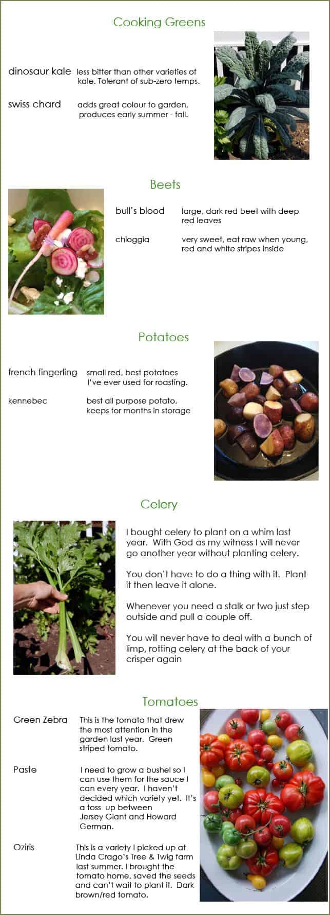 plants-to-plant
