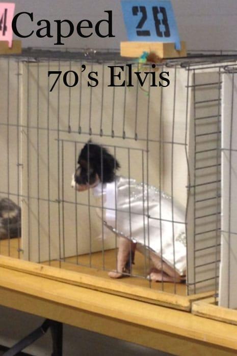 70selvis