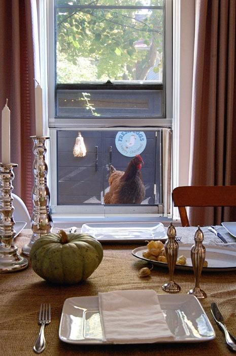 Thanksgiving-Chicken-2