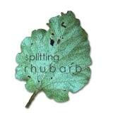 The Rhubarb Patch.  Splitting Rhubarb