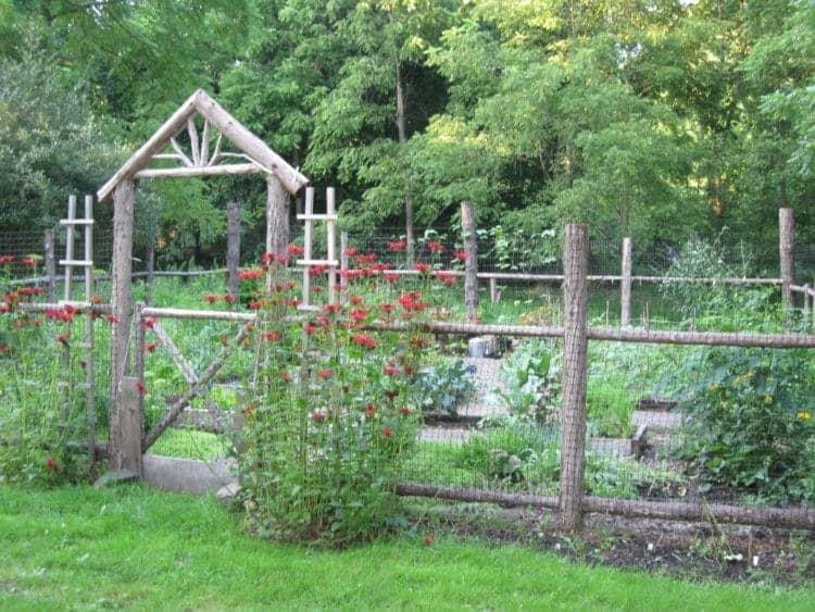 Garden-Fences-158