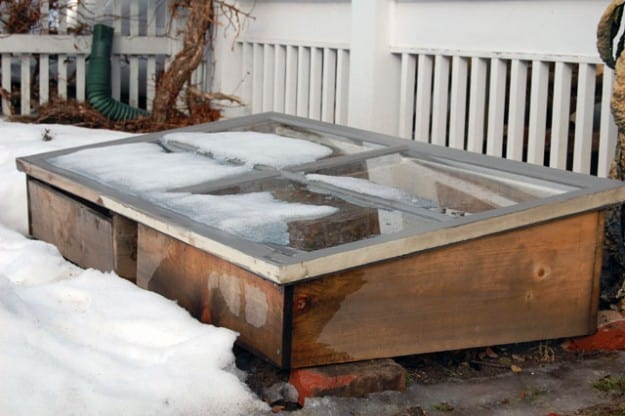 Cold Frame In Winter