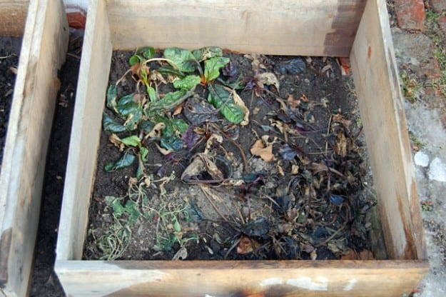 Cold Frame Right