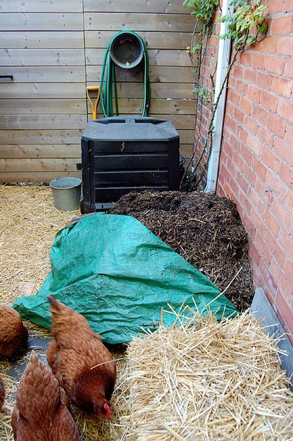 Compost With Tarp 2