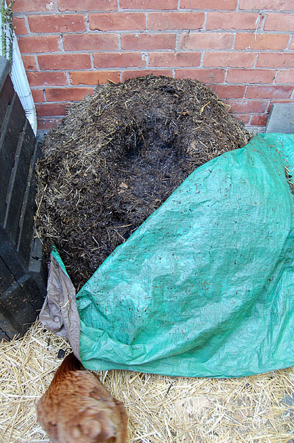 Compost With Tarp