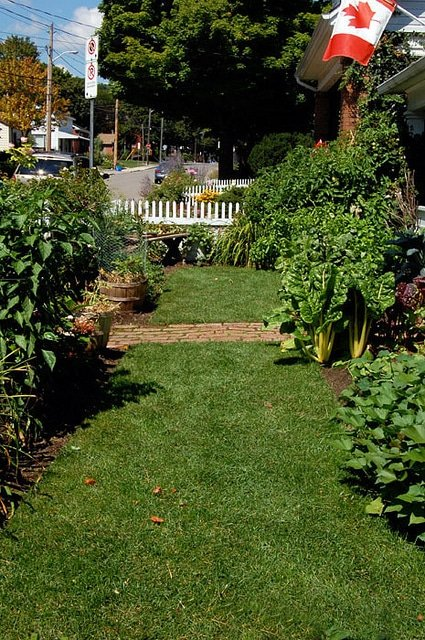 Front Yard Vegetable Garden