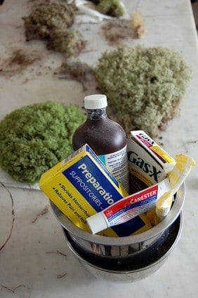How To Preserve Moss 10