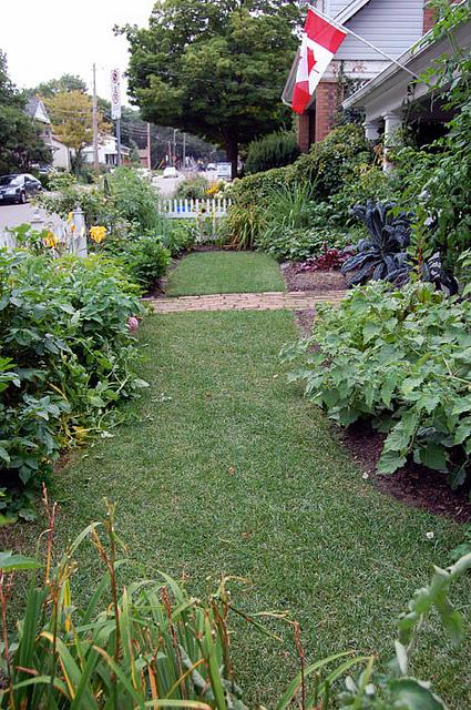 July Garden 3