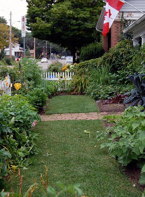 July Garden 33