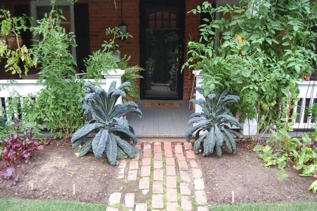 July Garden 8
