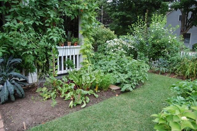 July Garden 9