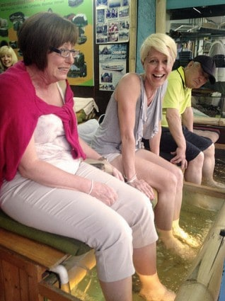 Karen Gets A- Fish Pedicure