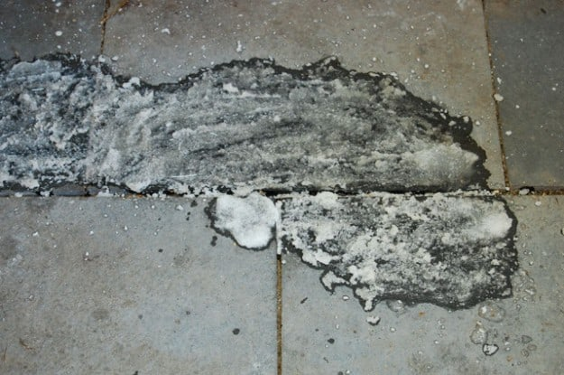 Oil 5 TSP paste
