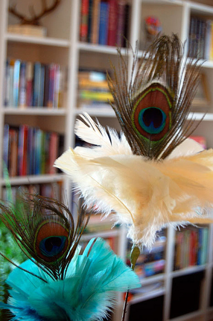 Peacock Feather Cat Toy 1