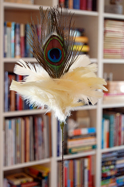 Peacock Feather Cat Toy 2