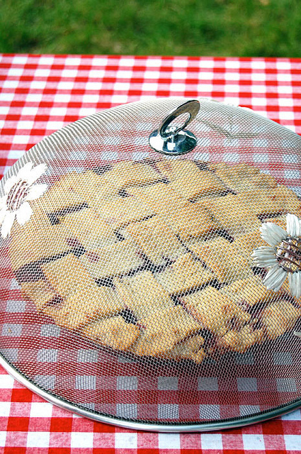 Pie Contest 4
