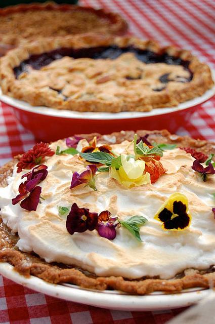 Pie Contest 5