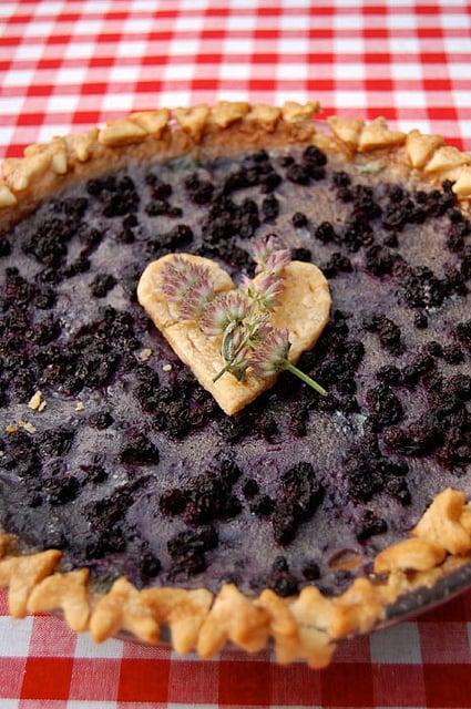 Pie Contest 7