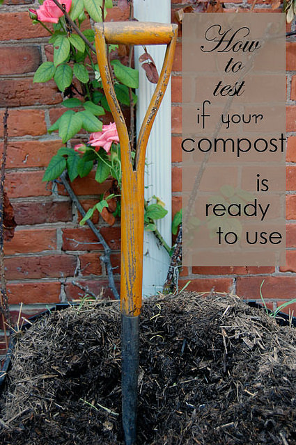 Testing Compost Title