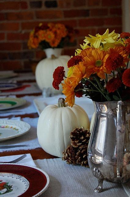Thanksgiving 2011 8