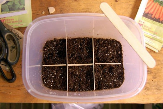 Winter Sowing 4