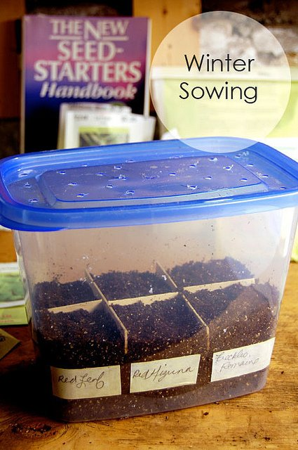 Winter Sowing Title