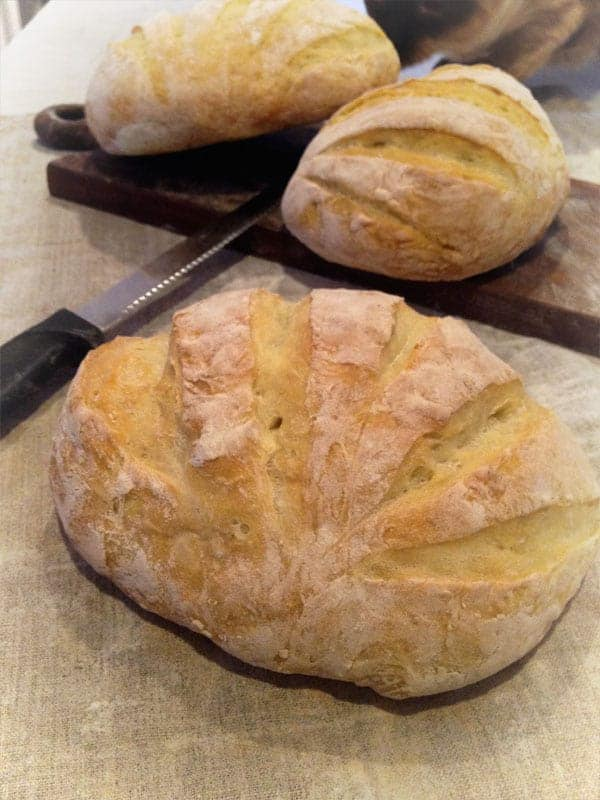 No Knead Bread Cooking It In A Wood Fired Oven Artisan