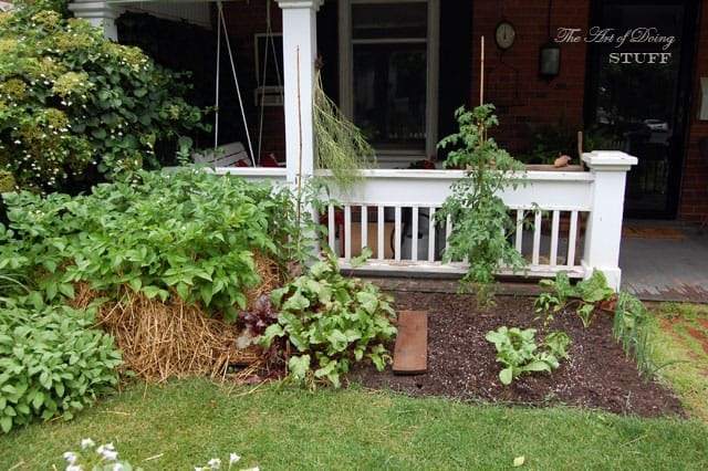 front-yard-vegetable-garden-left2