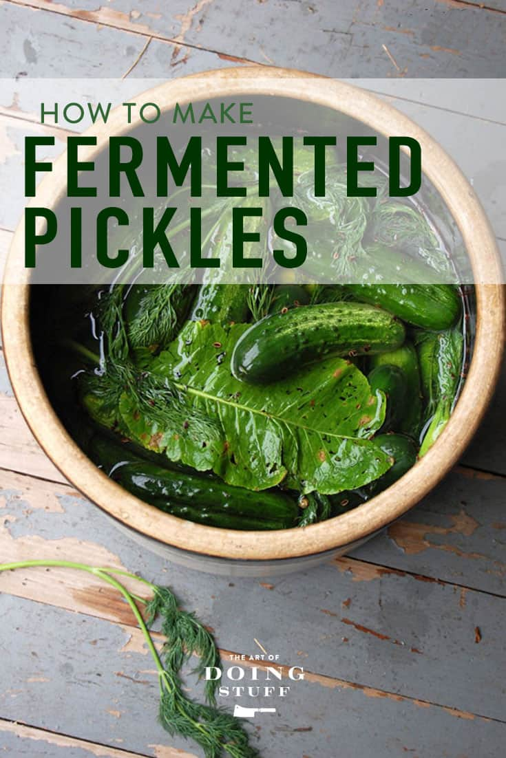 Fermented Pickles.  The Ultimate Guide to Kosher Dills.
