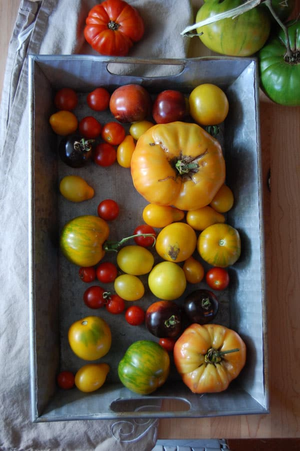heirloom tomatoes in a zinc metal tray.