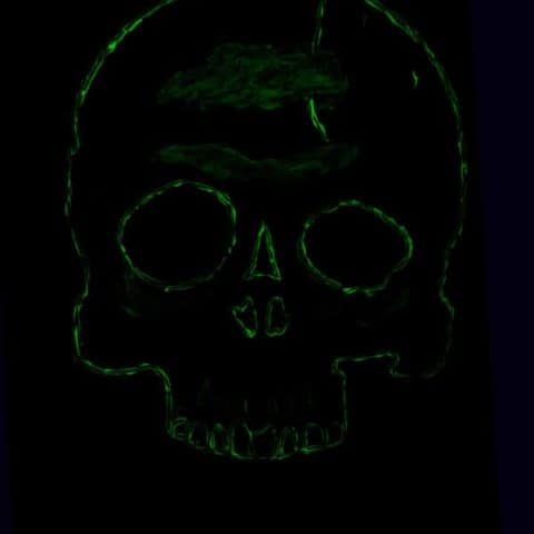 Halloween Wall Decoration - Glow in the Dark Skull