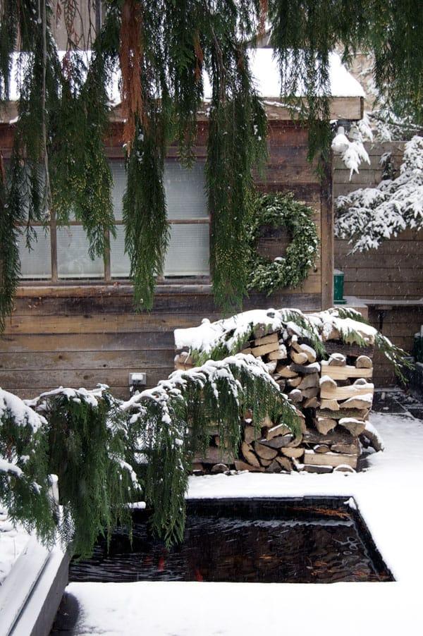potting-shed