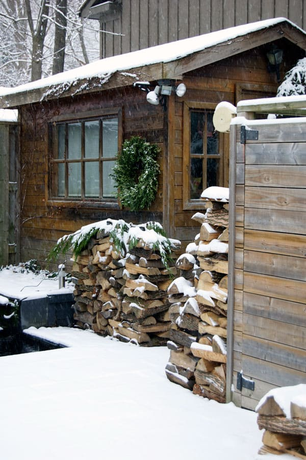 shed-and-wood-in-winter