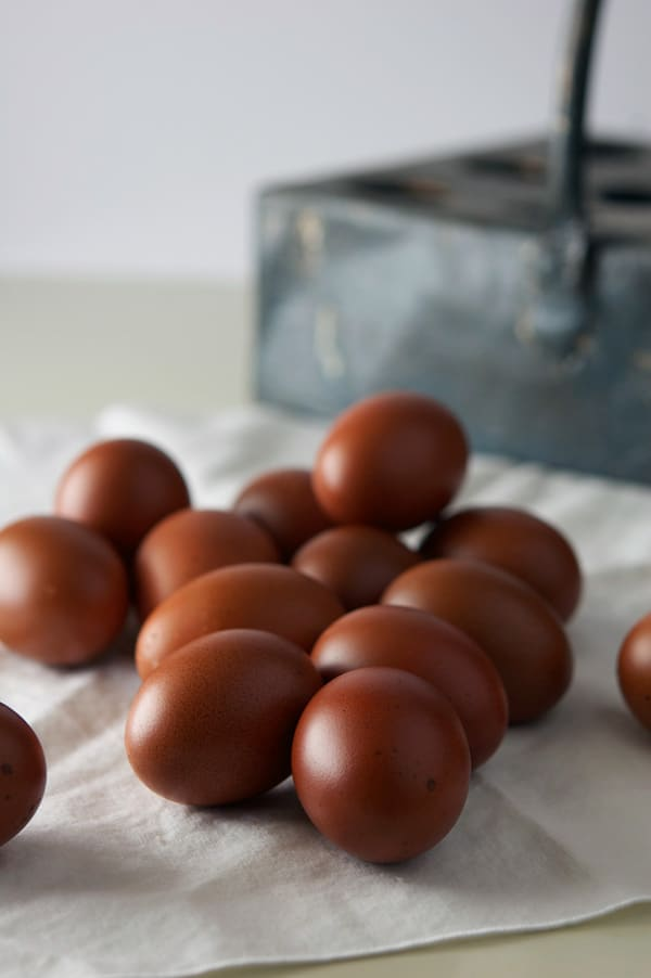 pile-of-marans-eggs
