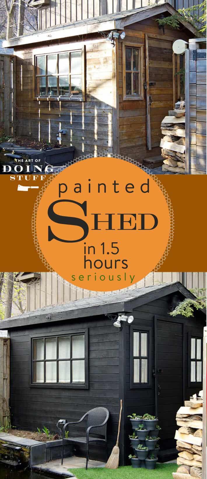 shed-longpin