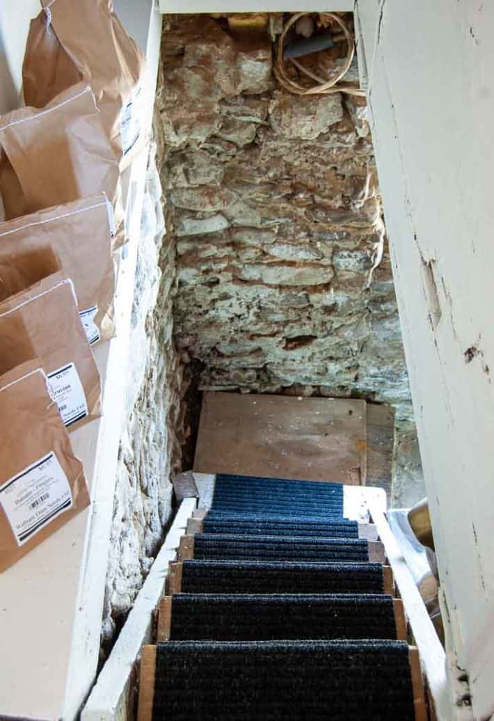 Rickety basement stairs carpeted with black indoor/outdoor carpeting.