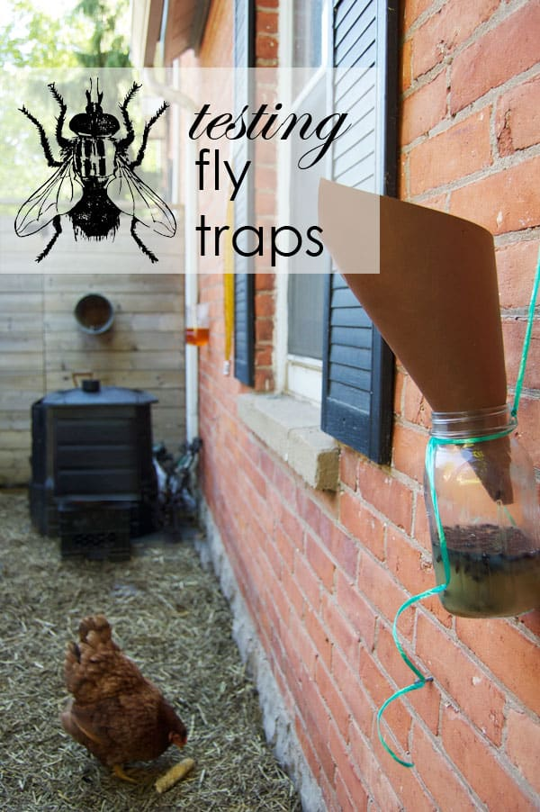 homemade fly trap made with mason jar and paper cone working well hanging on brick wall.
