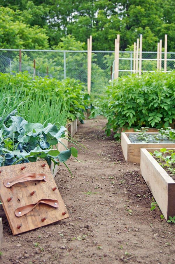 community-garden-left-side