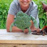 Vegetable Garden Tips & Tricks.