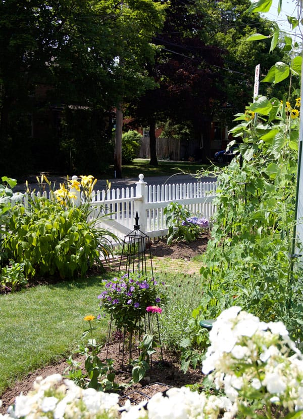 front-yard-vegetable-garden-4