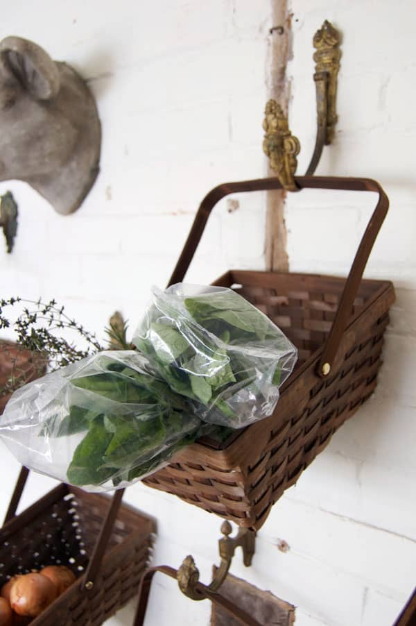 basil-in-basket